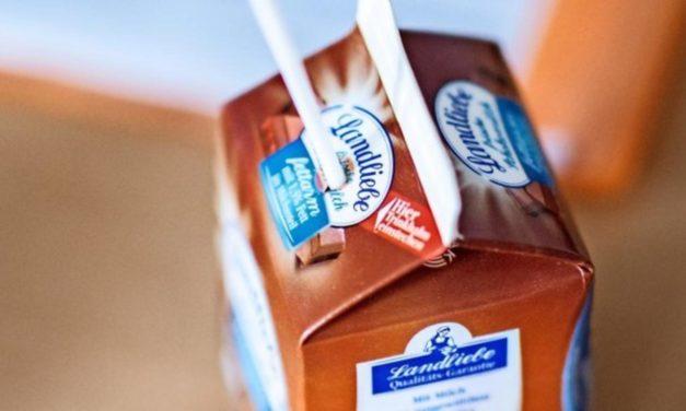 Streit um Kakao-Förderung: Foodwatch kritisiert Schulmilchprogramm scharf
