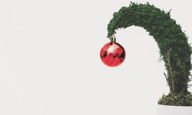 Darum sagen wir Weihnachten nicht ab