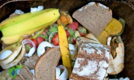 """Hannover hat's satt!"" – Unser Einsatz gegen Lebensmittelverschwendung"