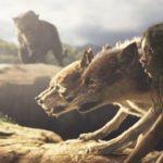 """""""Mowgli: Legend of the Jungle"""" gegen """"The Jungle Book"""" – ein Wettrennen der Dschungelbuch-Filme"""