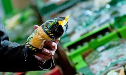 Recyceln oder Bio: Gibt es gutes Plastik?