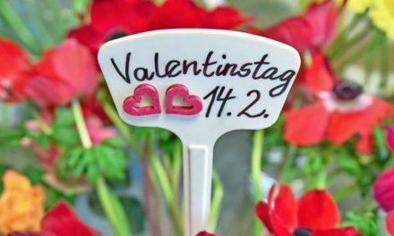 Valentinstag: Alle Infos zu Herkunft und Bedeutung