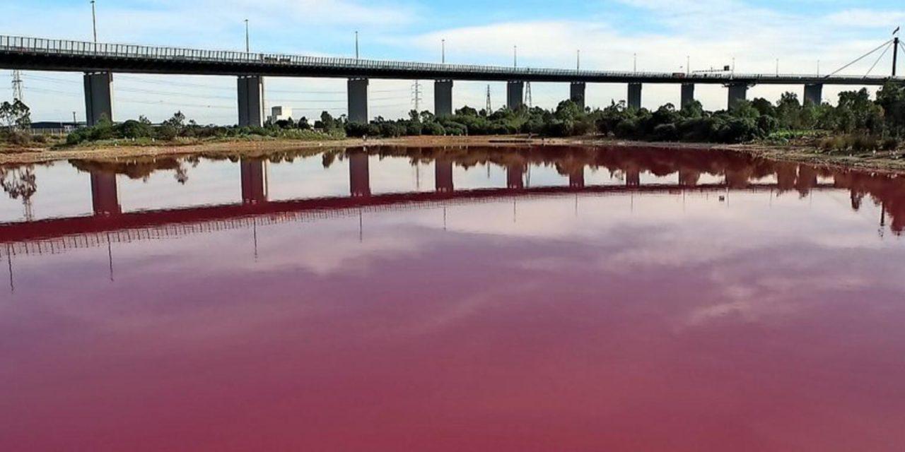 Warum ein See in Australien plötzlich knallrosa wurde