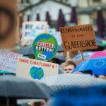 Fridays for Future: So reagiert das Netz auf die Proteste