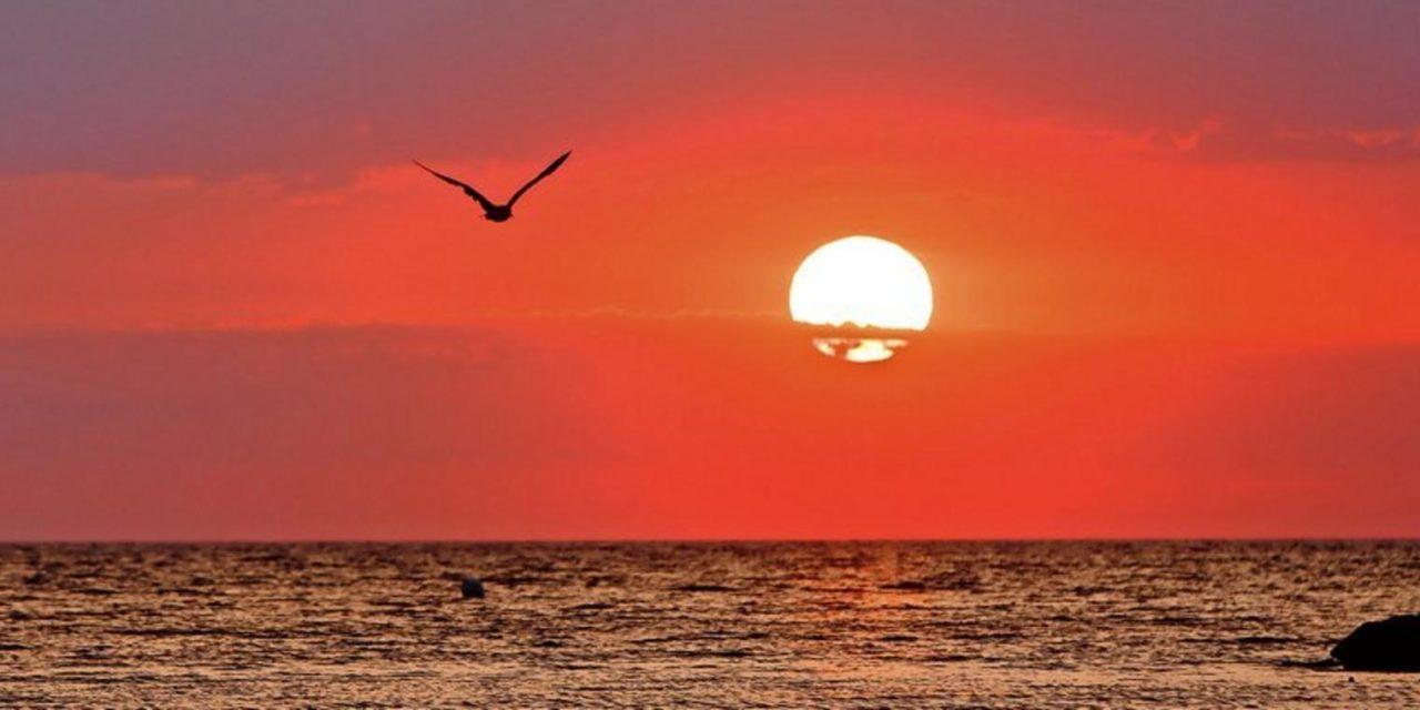 Hitzewellen: Die Meere schwitzen immer häufiger