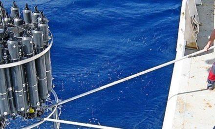 Wie viel menschgemachtes Kohlendioxid verschwindet in den Ozeanen?