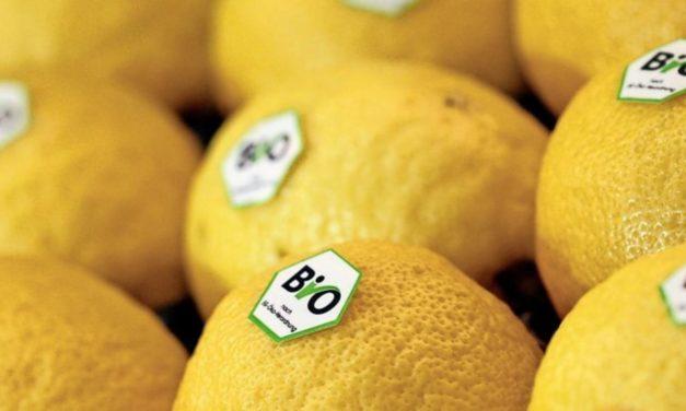 Fördern Bio-Lebensmittel den Klimawandel?