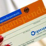Organspendeausweis: Das müsst Ihr wissen