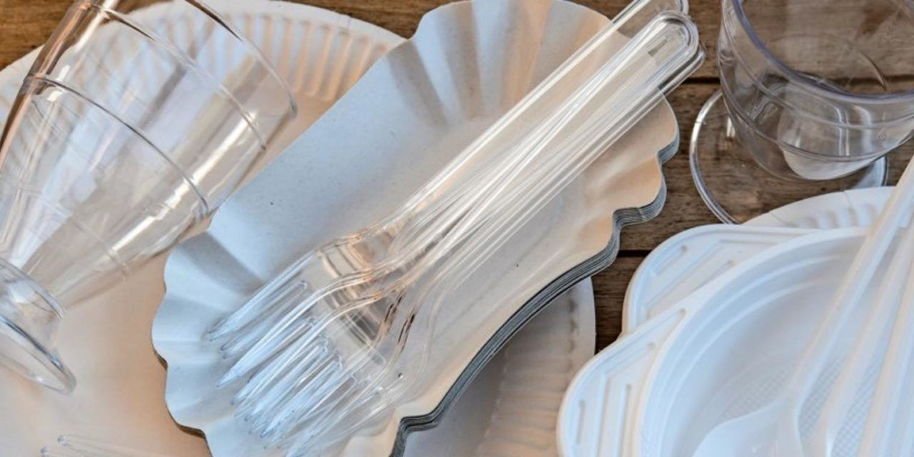Umweltbewusst Grillen: Wie gut ist plastikfreies Geschirr wirklich?