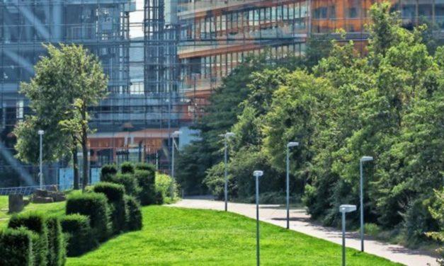 Wie mehr Pflanzen und Wasser für ein besseres Stadtklima sorgen sollen