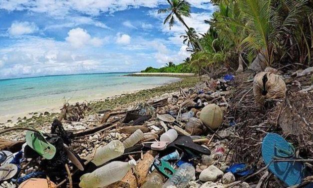 """""""Ausmaß unterschätzt"""": Paradiese versinken im Plastikmüll"""