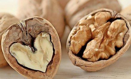 Brainfood: Kann man sich wirklich schlau essen?
