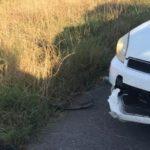"""""""Sehr wütender"""" Alligator beißt Streifenwagen, flüchtet vor der Polizei"""