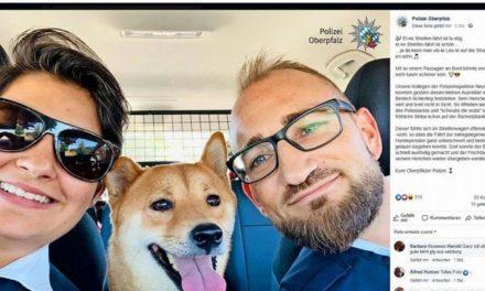 Polizisten-Selfie mit Findelhund begeistert in sozialen Netzwerken