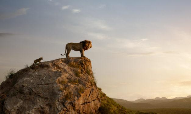 Disney-Kult: König der Löwen läuft ab jetzt in den Kinos