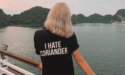 Dieser Account lebt den Koriander-Hass