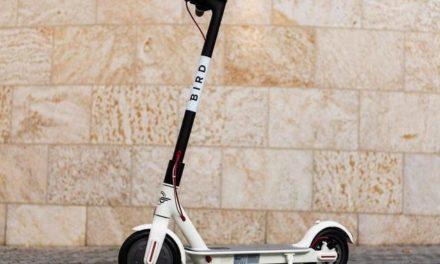 Auf Tier folgt Bird: Nächster E-Scooter-Verleih rollt in Deutschland aus