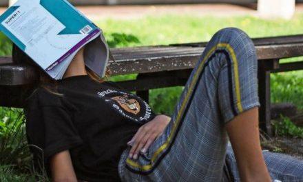 #MADSKolumne: Lieber Unicampus