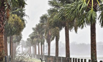"""Hurrikan """"Dorian"""" ist in den USA auf Land getroffen"""