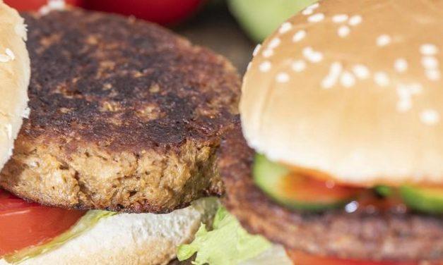 Vegane Burger im Öko-Check: Verunreinigungen und Gentechnik gefunden
