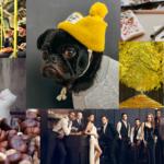 14 Dinge, auf die wir uns im Herbst freuen