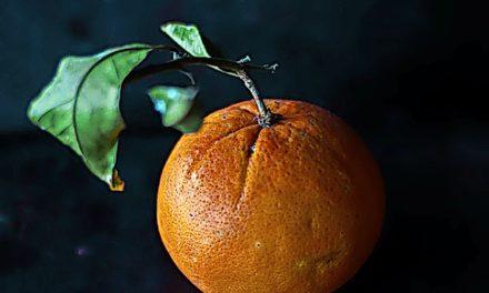 #MADSKolumne: Liebe Mandarinen-Puler