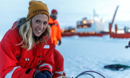 Eisbärenwache in der Arktis: Das hat Lehrerin Friederike auf einer Expedition erlebt