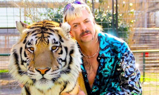 """""""Tiger King"""": Warum die Netflix-Serie Zuschauer begeistert und schockiert"""