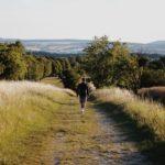 Tipp für Göttingen-Erstis: Eine Wanderung zur Burg Plesse