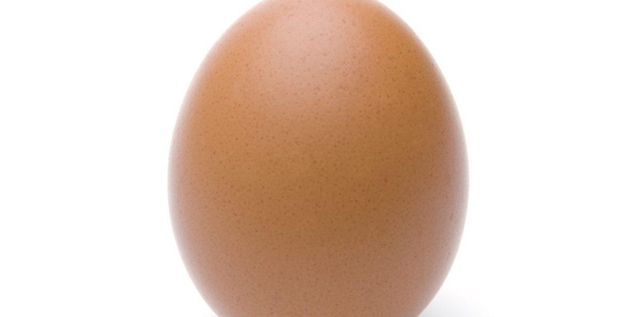 So steht das Ei auf seiner Spitze