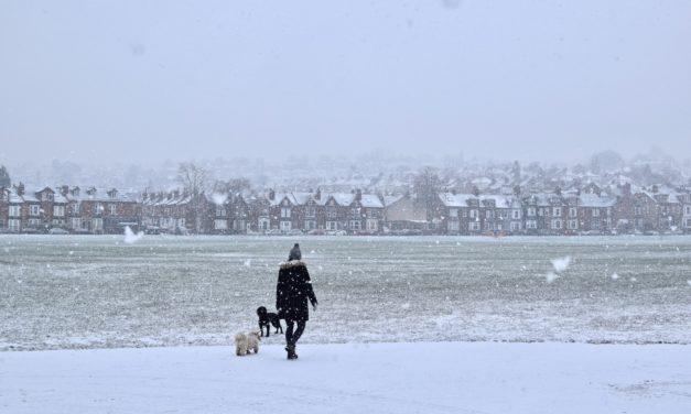 Homeoffice: Fünf Gründe, die Pausen trotz der Kälte draußen zu verbringen