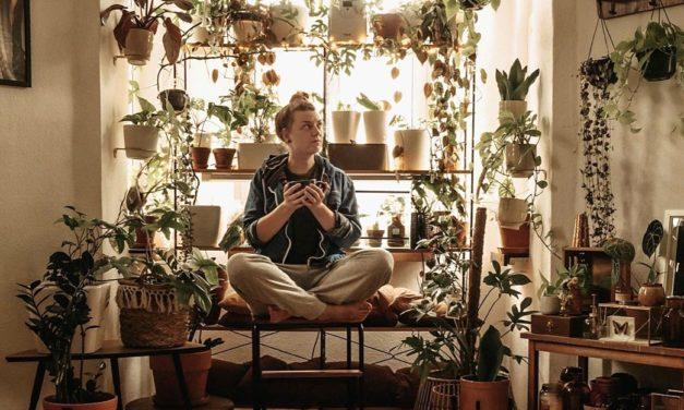 Auf Maries Instragram-Account dreht sich alles um Pflanzen und Introvertiertheit