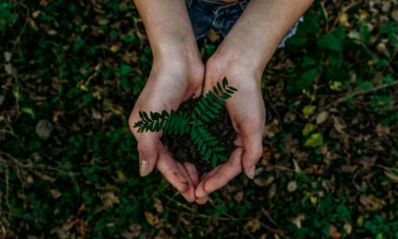 Nachhaltiger Konsum: So einfach schonst Du den Planeten – und Deinen Geldbeutel